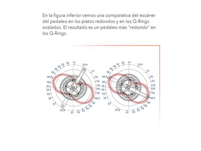 rotor grafico2